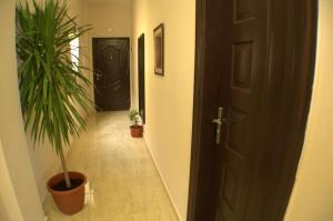 Avrio Red Sea Apartments, Apartmanhotelek  Gurdaka - big - 20