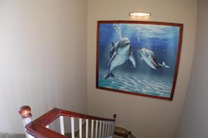 Avrio Red Sea Apartments, Apartmanhotelek  Gurdaka - big - 40