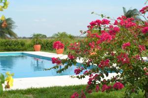 Hotel Campestre San Juan de los Llanos, Виллы  Yopal - big - 4