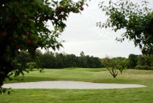 Abbekås Golfrestaurang & Hotell, Отели  Аббекас - big - 26