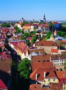 Vip Old Town Apartments, Ferienwohnungen  Tallinn - big - 8