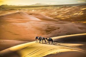 Marhaba Camp, Camel & Sandboarding, Luxury tents  Merzouga - big - 57