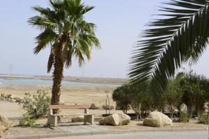 Rose Dead Sea Neve Zohar, Penzióny  Neve Zohar - big - 48
