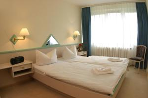 Ferienhotel Markersbach, Hotely  Markersbach - big - 2