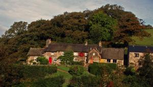 Tarr Farm Inn, Inns   Liscombe - big - 10