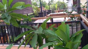 Anila Shanti Guest House, Affittacamere  Ubud - big - 23