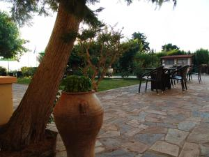 Galini, Hotely  Loutra Edipsou - big - 50