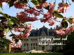 Hotel u Michalika, Hotels  Pszczyna - big - 24