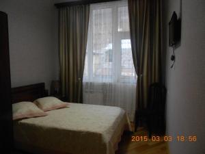 Borjomi Park Guest House, Affittacamere  Borjomi - big - 5