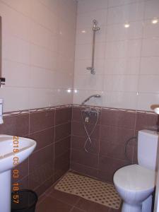 Borjomi Park Guest House, Affittacamere  Borjomi - big - 9