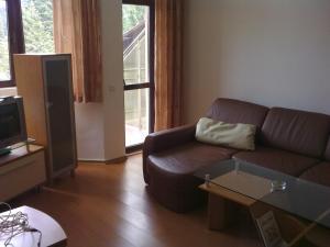 Apartments Flora-Daisy, Apartmanhotelek  Borovec - big - 5