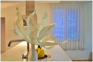 Apartmants Biocic, Ferienwohnungen  Trogir - big - 4