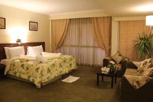 Horizon Shahrazad Hotel, Отели  Каир - big - 13