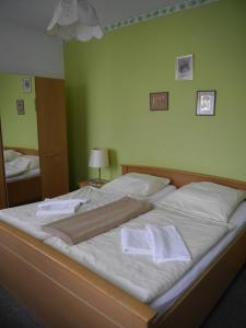 Hotel zur Sonne, Hotels  Cottbus - big - 2
