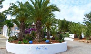 Hacienda Encanto del Rio, Apartmány  Es Figueral Beach - big - 64