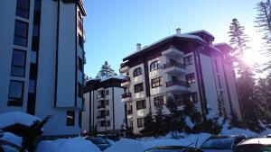 TES Flora Apartments, Apartments  Borovets - big - 84