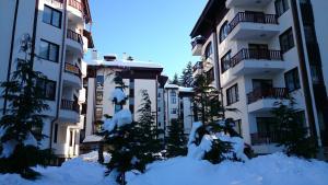 TES Flora Apartments, Apartments  Borovets - big - 83