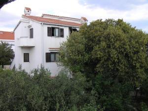 Apartments Paladina, Appartamenti  Mandre - big - 41