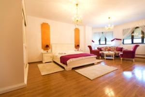 Noblesse Suite, Ferienwohnungen  Galaţi - big - 7