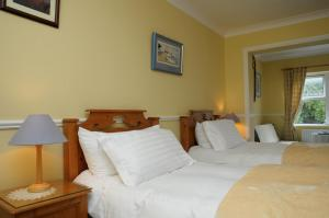Milltown House Dingle, Отели  Дингл - big - 28