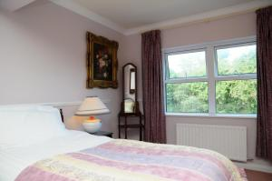 Milltown House Dingle, Hotel  Dingle - big - 65