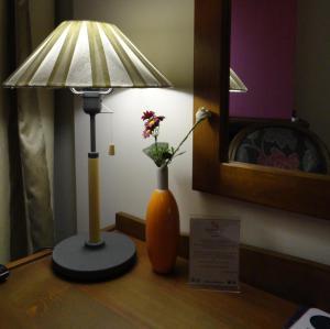 Hotel Rodovoli, Hotely  Konitsa - big - 15