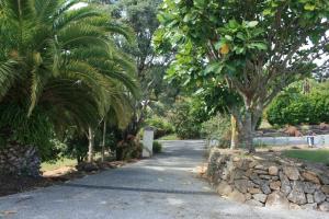 Riverstone Lodge Kerikeri, Bed and breakfasts  Kerikeri - big - 11