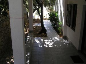 Apartments Sugar, Apartmanok  Mandre - big - 17