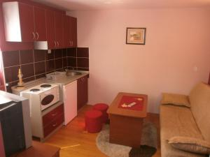 Apartments Katarina, Appartamenti  Zlatibor - big - 24