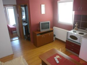 Apartments Katarina, Appartamenti  Zlatibor - big - 25