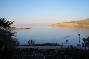 Mykonos Thea
