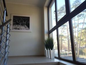 Apartment Mielno-Park, Appartamenti  Mielno - big - 10