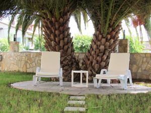 Dalyan Palmiye Resort Hotel, Hotels  Dalyan - big - 36