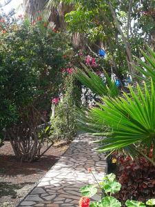 Residencial Casabela, Apartments  Los Llanos de Aridane - big - 20