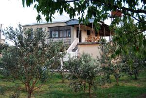 U Rafa Guest House, Guest houses  Pizunda - big - 61