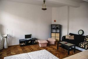 Cosy Flat Pisek Downtown, Apartments  Písek - big - 5