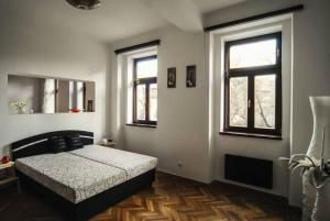 Cosy Flat Pisek Downtown, Appartamenti  Písek - big - 9