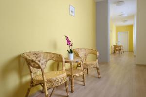 Centrum Zdraví Bez Limitu, Penzióny  Starý Jičín - big - 23