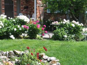 A Wildwood Rose Vacation Rental, Villas  Kelowna - big - 7