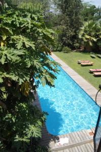 Meru House Lekisilai, Affittacamere  Arusha - big - 40
