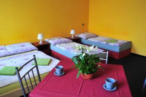 Hostel Alia, Hostelek  Prága - big - 20