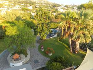 Hotel Ideal, Hotels  Ischia - big - 41