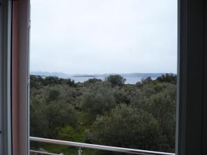 Olive Apartments, Apartmány  Ugljan - big - 10