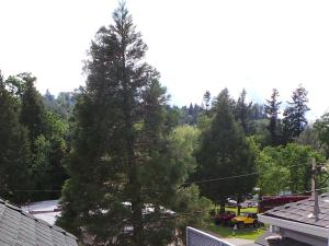 Daffodil Suite, Apartments  Placerville - big - 30
