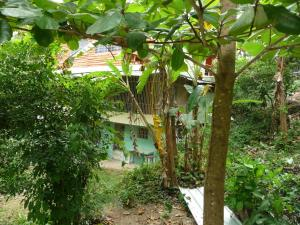 Riverside Private Lodge, Lodge  San Felipe de Puerto Plata - big - 40