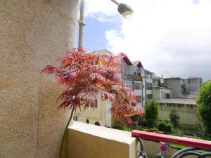 LV Premier Apartments Firmeza- SC, Appartamenti  Oporto - big - 6