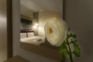 Hotel Zefyros, Отели  Платамонас - big - 29