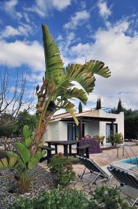Villa Anna Maria, Vily  Coral Bay - big - 14