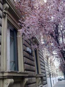 Casa Gigli - Arts Lodge - abcRoma.com