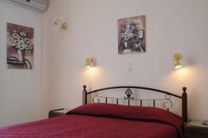Senia Studios, Residence  Agia Marina Aegina - big - 3